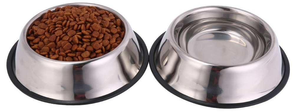 Best Dog Food And Water Bowls