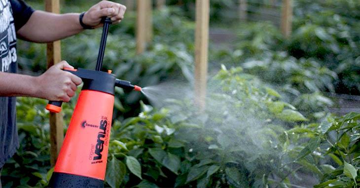 Top 10 Best Garden Sprayers