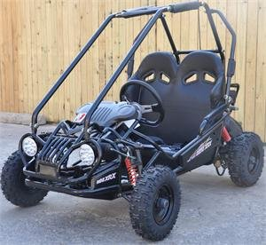 Top 10 Best Off Road Go Karts Review In 2020- A Step By Step Guide 1