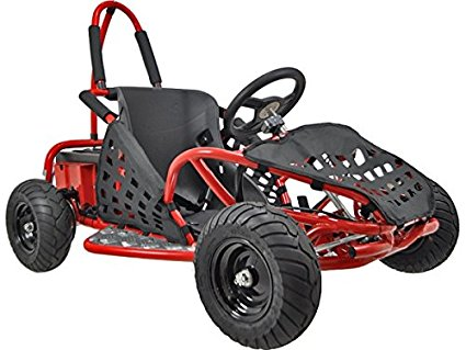 Top 10 Best Off Road Go Karts Review In 2020- A Step By Step Guide 7