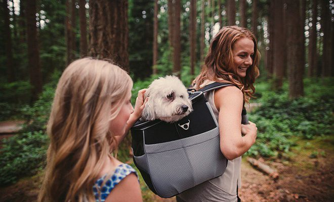 Pet Carrier Backpacks
